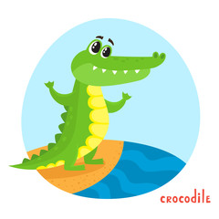 Vector cartoon illustration of wild animal crocodile isolated on white