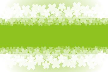 背景素材,フレーム,春,満開,サクラの花びら,さくらの花,桜の木,入学式,卒業,アルバムタイトル,枠