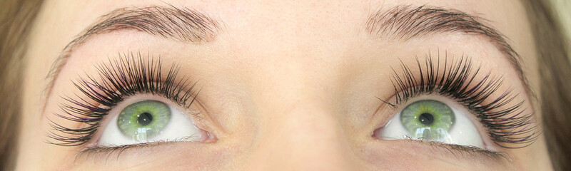 Close up view of beautiful green female eyes with long false eyelashes. Eyelash Extension Procedure. Fototapete
