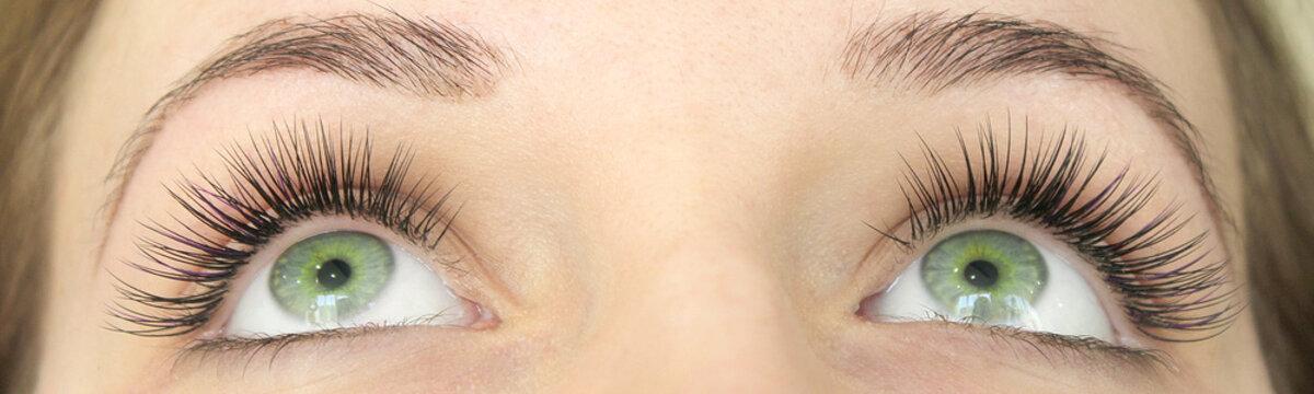 Close up view of beautiful green female eyes with long false eyelashes. Eyelash Extension Procedure.