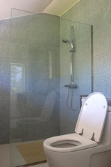 Bathroom with white flush toilet or faucet and little blue mosaic tiles on the wall  with clear mirror to separate shower wet area from the toilet dry area.