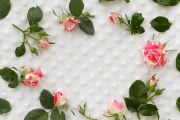 Round frame pattern with roses, pink flower buds on white background. Space for text.