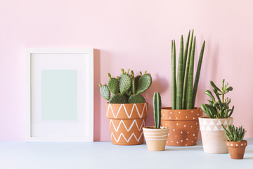 Papiers peints Cactus Modern interior with cacti