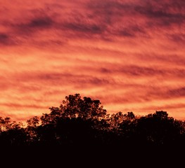 Isolated photo of a beautiful vivid sky at sunset