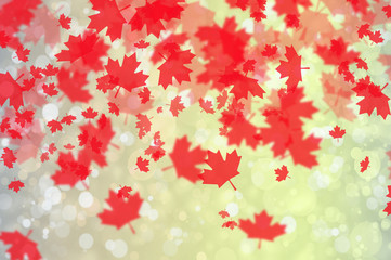 Festive Background with Maple Leafs