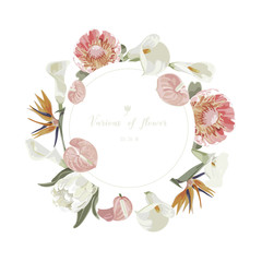 Orchids floral bouquet . Flourish greeting card and circle label .