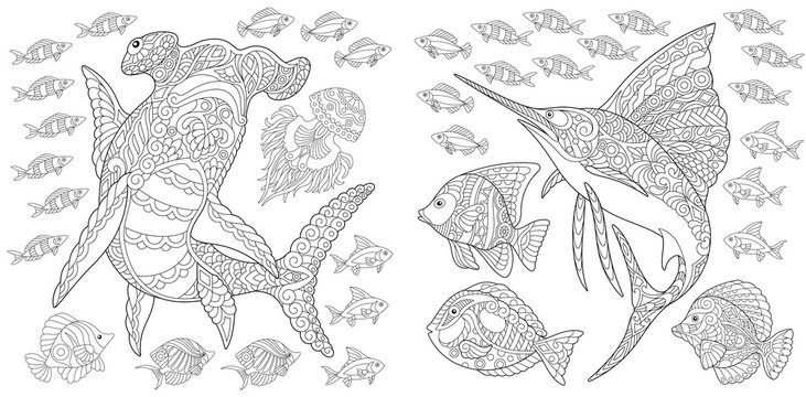 Ocean nature panorama. Hammerhead shark, sailfish and tropical fishes of different species. Coloring Page. Adult Coloring Book idea.
