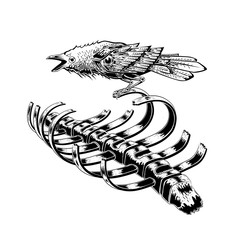 black raven bird stay on rib skeleton. crow bird. anatomy art. illustration vector. tattoo design.