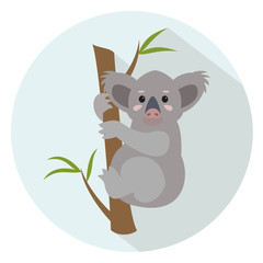 Cute koala on blue background.