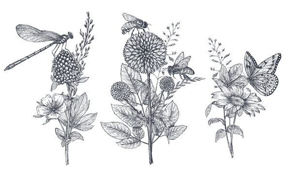 Set of three vector floral bouquets with black and white hand drawn herbs, wildflowers and insects