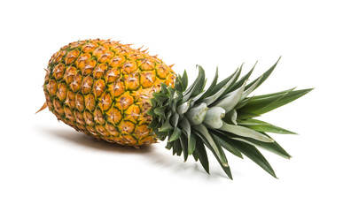 big ripe pineapple isolated
