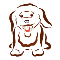 Cheerful fluffy little brown puppy
