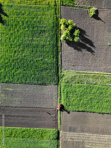 Wall mural Aerial view on a rural field a tractor works