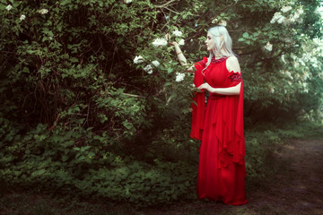 Young elf woman in a red dress in a fairy forest.