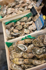 Fresh French Oysters at the market in Paris