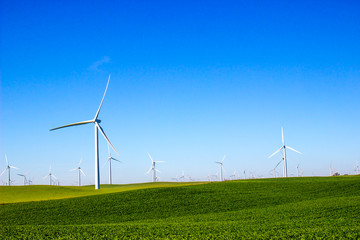 Fields With Three Bladed Energy Producing Windmills