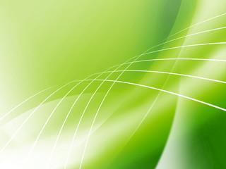 エコ背景 若葉 クローバー エコロジー 自然環境 えこ
