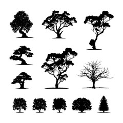 Set of Tree Silhouette vector illustration