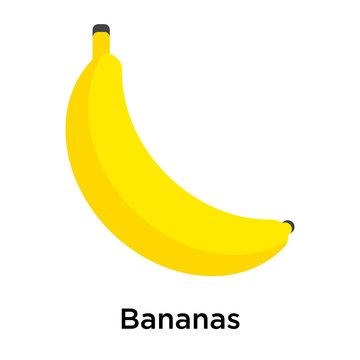 Bananas icon isolated on white background