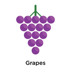 Grapes icon isolated on white background