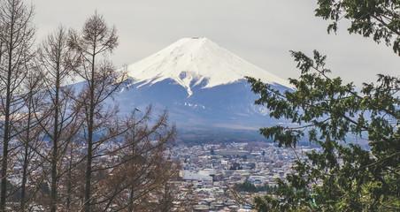 Magnifique vue sur le Mont Fuji au printemps depuis la Chureito Pagoda