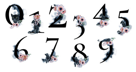 Watercolor numbers with splashes backgrounds flowers and black panthers. Romantic set for wedding invitations and card