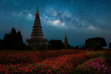 View of Phra Maha Dhatu Nabha Metaneedol and Phra Maha Dhatu Nabhapol Bhumisiri with flower field and milky way stars at night, Chiangmai, Thailand.