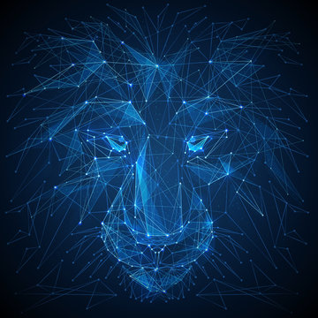 Abstract vector image of lion. Lion's head Low poly wire frame illustration. Lines and dots. RGB Color mode. Wild animals concept. Polygonal art.