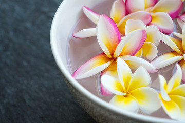 Tuinposter Frangipani Plumeria flower floating in ceramic bowl on stone table in tropical luxury asian spa