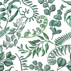 Hand drawn pattern eucalyptus, succulent flowers.