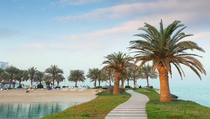 Qatar coast with palms, Doha