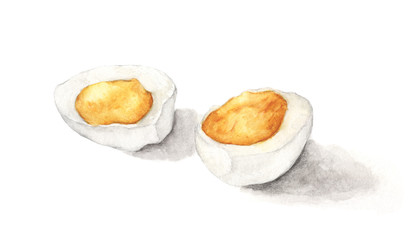 Hard boiled egg isolated on white background. Hand drawn watercolor illustration.