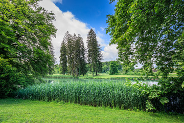 Amazing green landscape in bally park schoenenwerd