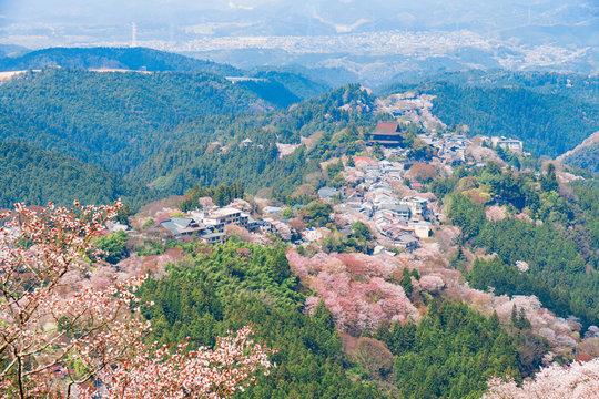 奈良の春の風景 満開の桜 吉野 奈良 日本