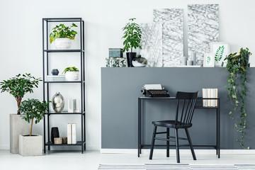 Plants, shelf and desk