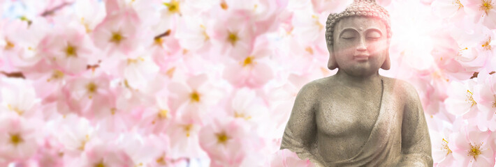 Photo sur Plexiglas Buddha buddha sculpture in sunshine under the flowering cherry blossoms