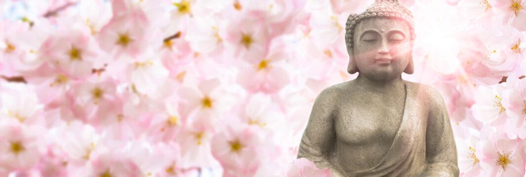 buddha sculpture in sunshine under the flowering cherry blossoms