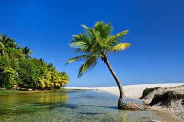 Wild beach on south-western Dominican Republic in the close of the Paraiso village