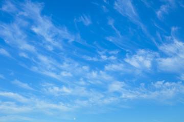 青い空と白い月