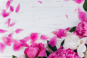 Pink and white peonies with petals on a wooden background. Copy space and flat lay.