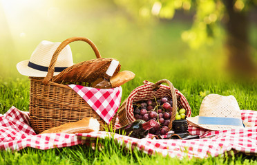 Zelfklevend Fotobehang Picknick Picnic on a Sunny Day with Red Grapes and Wine