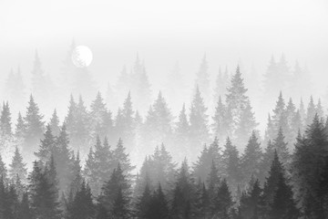 Minimalist forest in fog. Digital painting.