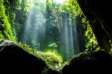 Secret beautiful tukad waterfall in canyon, Bali, Indonesia