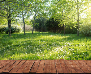Old wooden table and grass in backyard