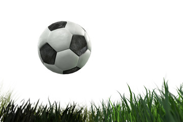 3D Illustration of a soccer ball on grass on white background