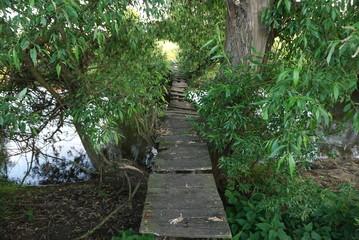 old wooden bridge across river