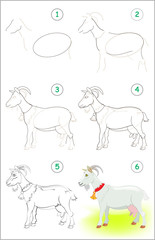 Page shows how to learn step by step to draw a cute goat. Developing children skills for drawing and coloring. Vector image.