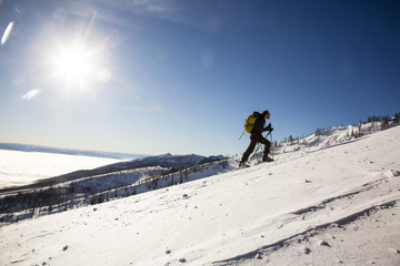 Skier ascending snowcapped hill, Victor, Montana, USA