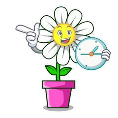 With clock daisy flower character cartoon