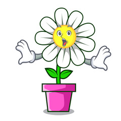 Surprised daisy flower mascot cartoon
